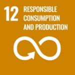 SDG 12 Manual Thinking
